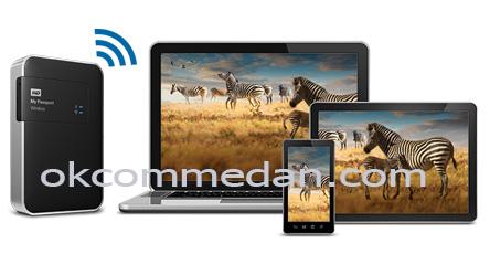 wd 2tb wifi