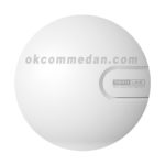 Totolink N9 Wireless Access Point 300 mbps